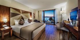 Superior Room -  Bedroom 2